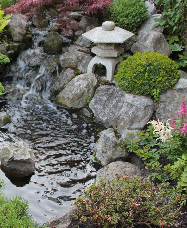 Japanse tuin 4
