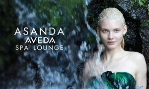 Groupon - Classic Facial with Optional Eye Treatment or Plant Peel, or Spa Facial at Asanda Aveda Spa Lounge (Up to 53% Off) in SoHo. Groupon deal price: $39