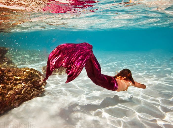 pink-tailed mermaid | Under the Sea- Art and Photography ...  pink-tailed mer...