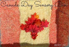 And Next Comes L: Canada Day Sensory Bin