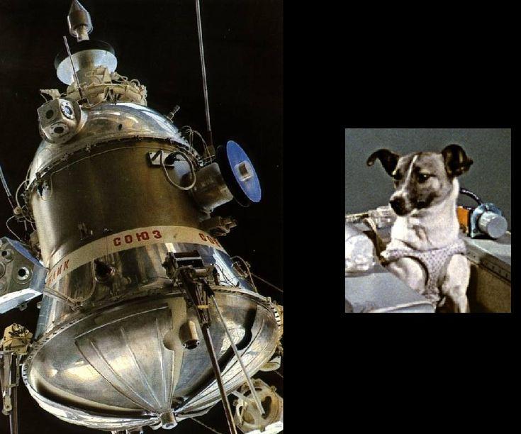 """""""sputnik 2"""" - Szukaj w Google"""