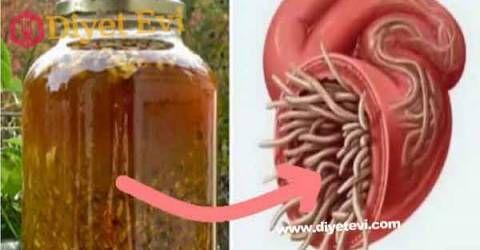 Vücuttaki enfeksiyonu ve parazitleri öldüren en güçlü doğal antibiyotik