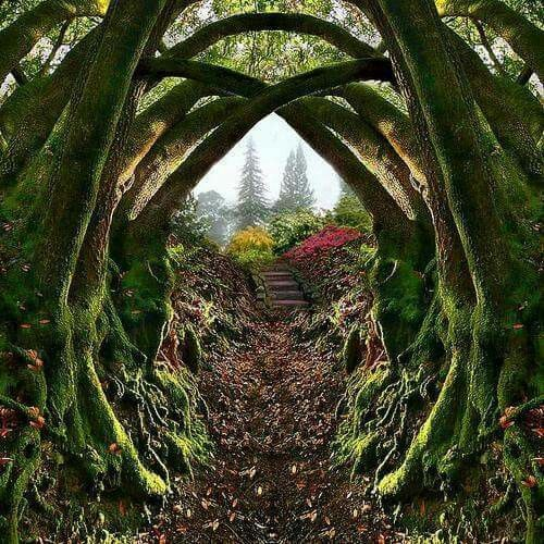 Entrance to the Secret Garden, Portland, Oregon Nestled in the hills on the…