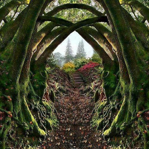 Entrance to the Secret Garden, Portland, Oregon Nestled in the hills on the…