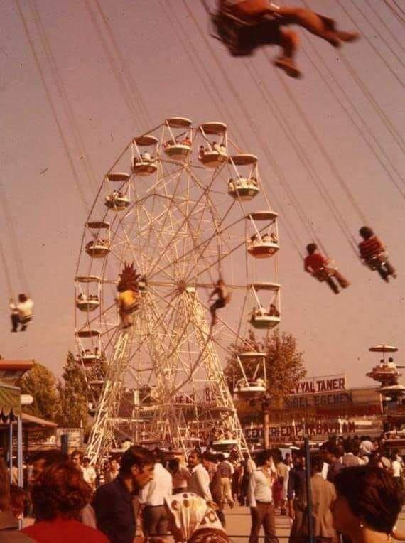 Luna Park 1980 Agac Zeytin