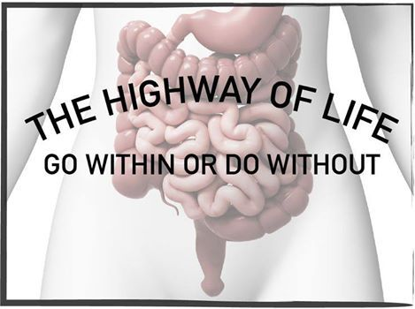 "The digestive highway = your meals starting with the easiest to digest foods first followed by the more complex foods to avoid a ""food traffic jam"". First = Water or Fruit Juice Second = Soups that are not cream based Third = Green leafy non-starchy vegetables Fourth = Starches and starchy vegetables Fifth = Proteins"
