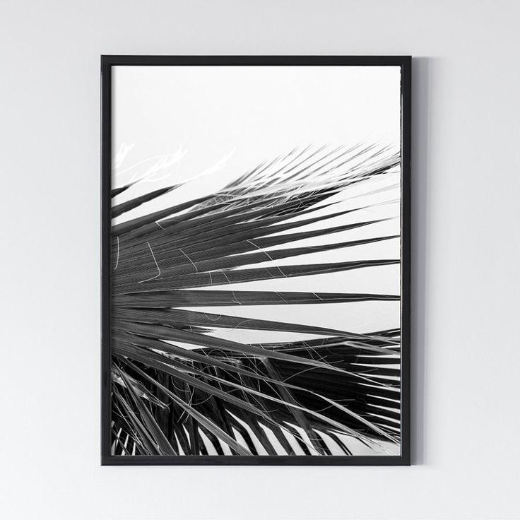 Пальмы. Черное 0.5