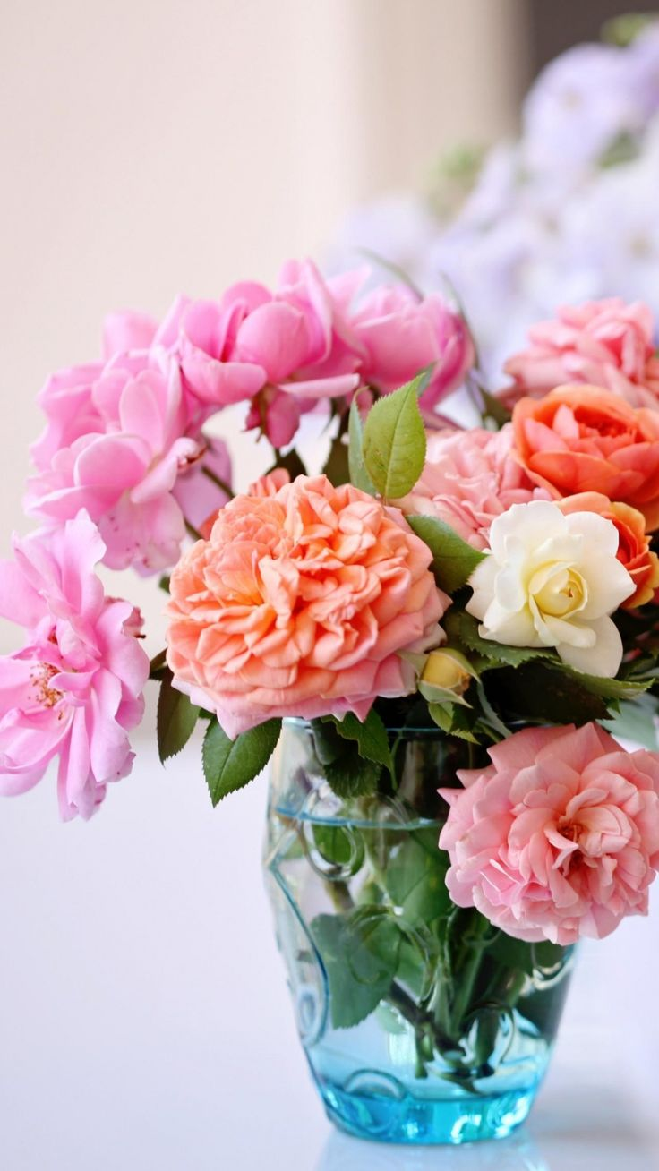 Download wallpaper 1080x1920 roses flowers garden - Samsung galaxy s4 wallpaper hd 1080x1920 ...