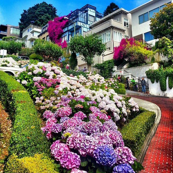 Lombard Street - Russian Hill - San Francisco, CA