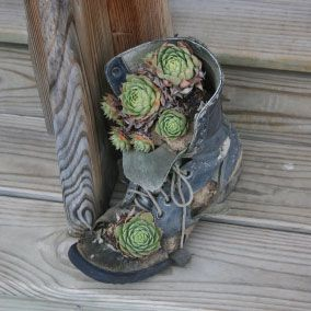 Upcycled Boot Planter.  Not a huge fan of succulents - but love this idea.