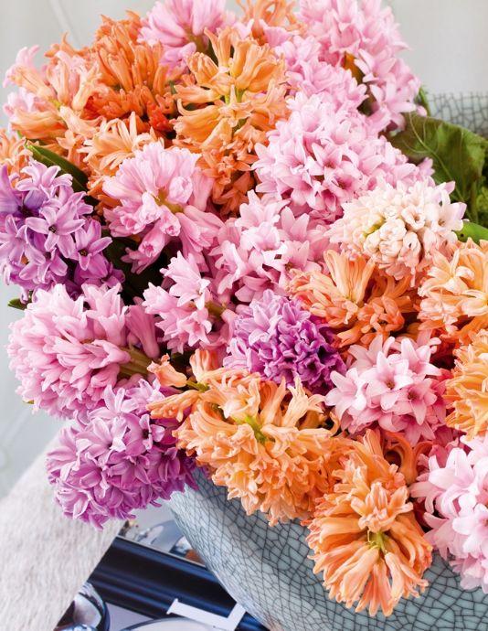 Groen wonen | Gek op lentebloem de Hyacint – Stijlvol Styling - WoonblogStijlvol Styling – Woonblog