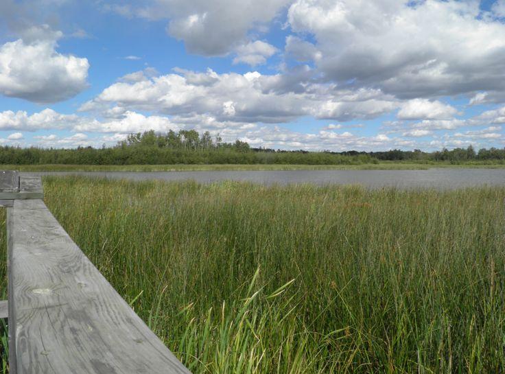Clifford E. Lee Nature Sanctuary, Parkland County, Alberta, Canada