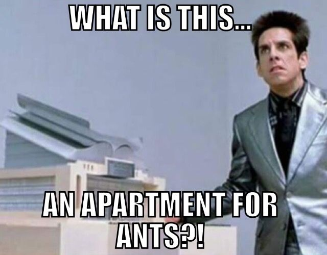 Chicago Apartments  - 10 Phrases That Prove The Chicago Apartment Struggle is Real