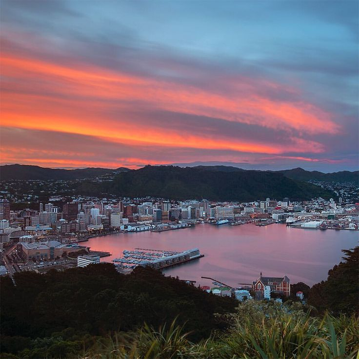 """1,069 Likes, 27 Comments - Nick Crarer (@nick_crarer) on Instagram: """"Wellington, New Zealand. I've recently moved to Mount Vic in Wellington and now if there's even a…"""""""