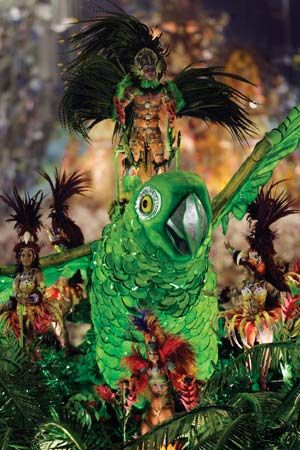 A sight you don't see every day - Rio Carnival. #Rio #Carnival #Brasil #Travel