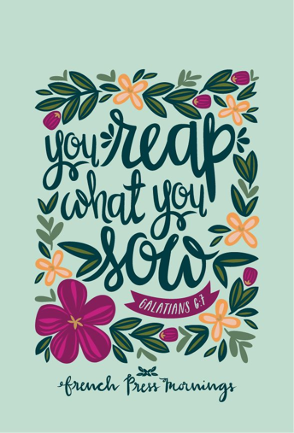 "French Press Mornings - ""You reap what you sow"" - Galatians 6:7"