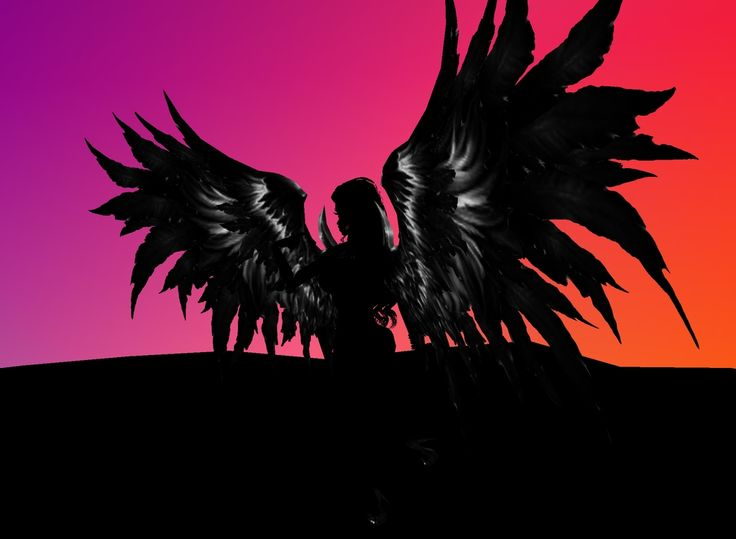 this is a lonely black angel.he wants to fly did not know where to fly. he also go away do not know where anybody.
