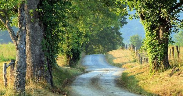 Cades Cove, Tennessee | Clinch & Go | Pinterest | Cades cove, As and Tennessee