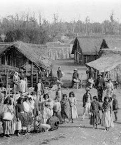 maori village - Google Search
