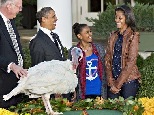 Nearly 1 In 5 Households Will Celebrate Thanksgiving On Food Stamps This Year… Happy Thanksgiving, America!