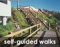 Check out our self guided Art Deco walks around Randwick.