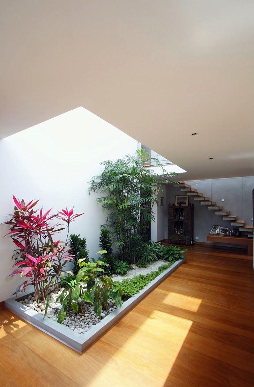 Jardim de inverno na sala com clarabóia. Fotografia: http://www.decorfacil.com/jardim-de-inverno-modelos-e-plantas/