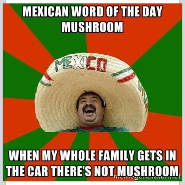 Mexican Word of the Day: Mushroom   Now That's Merican