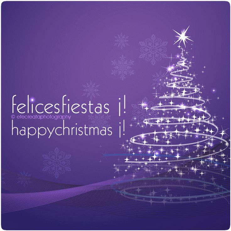 Felices Fiestas !! Happy Christmas !!