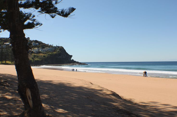 Whale Beach- and its still winter