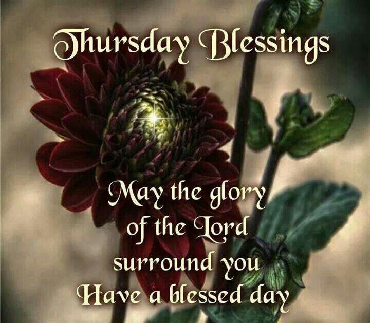 Thursday Blessings good morning thursday thursday quotes good morning thursday thursday blessings thursday image quotes