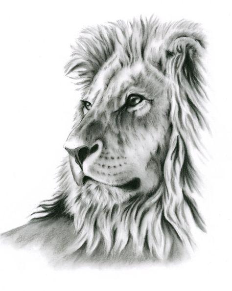 Charcoal Drawing Charcoal Print Lion Art Lion Drawing Lion Sketch Charcoal Lion Lion Print Lion Art Lion Sketch Lion Drawing