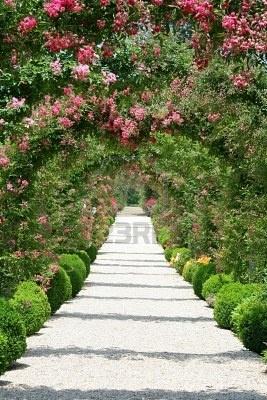 Rose arch | garden: ideas | Pinterest | Arch, Gardens and ...