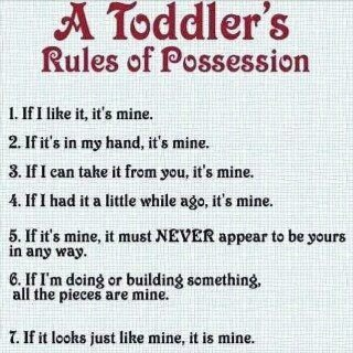 Couldnt have said it better myself: Possessive, Quotes, Kids Stuff, Sotrue, Funny Stuff, So True, Baby, The Rules, Toddlers Rules