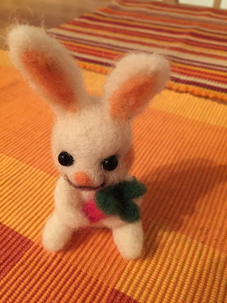 Králík/Rabbit