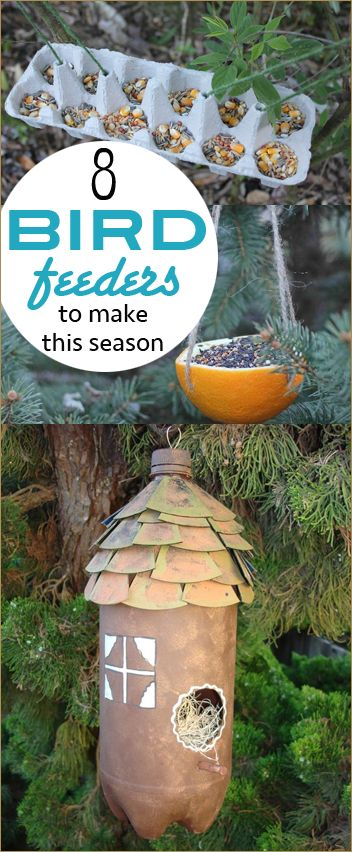 1000 images about paige 39 s party ideas on pinterest for Making a bird feeder out of recycled materials