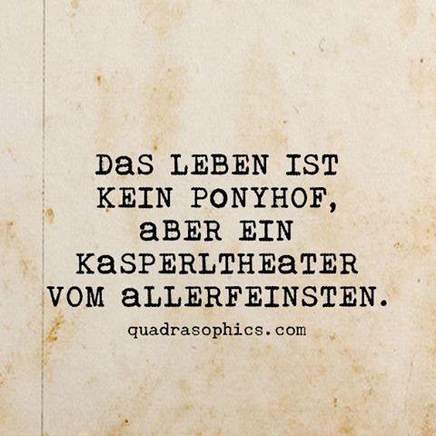 #Quadrasophics #Ponyhof