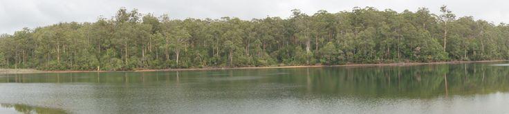 Big Brook Dam, Bibbulmun Track