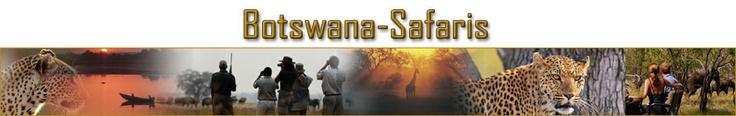 Photography in the Okavango Delta - Dream vacation