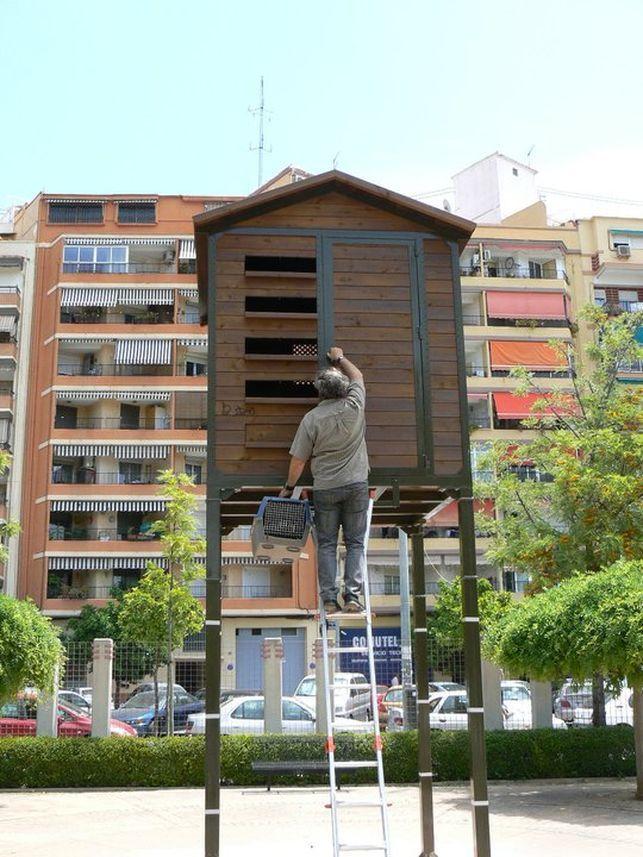 Valencia cambia la caza de palomas por los piensos esterilizantes