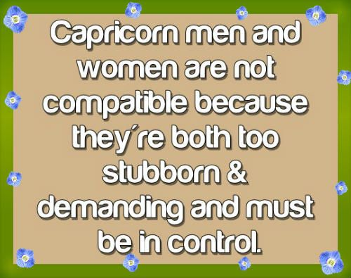 capricorn horoscope personality - Google Search