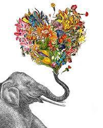 Resultado de imagem para elefante indiano tumblr