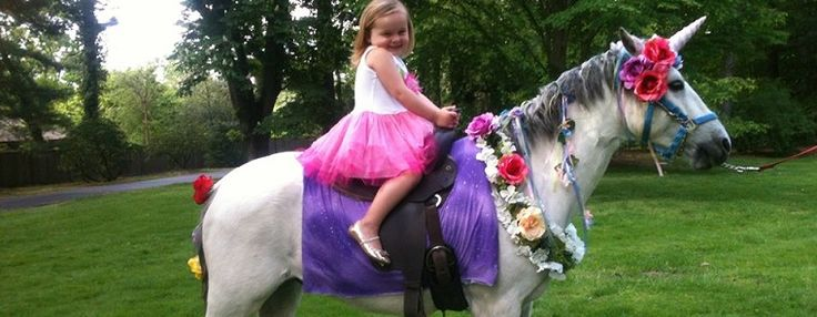 Unicorn Pony Party Rental Traveling Birthday Events Philadelphia Pa Area Pony Party Zoo Animal Party Kids Castle