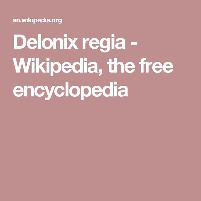 Delonix regia - Wikipedia, the free encyclopedia