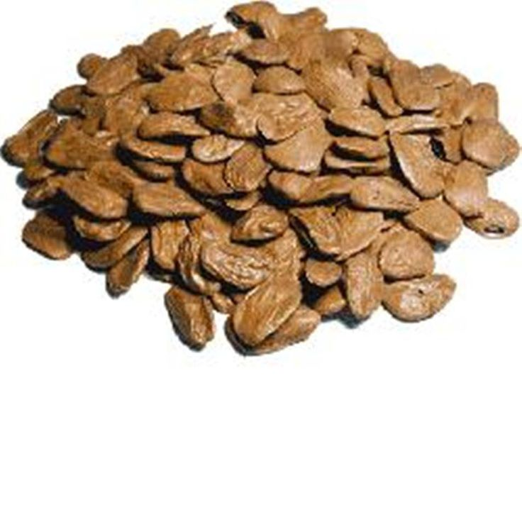 Akuamma Seeds | Welcome to Our Store