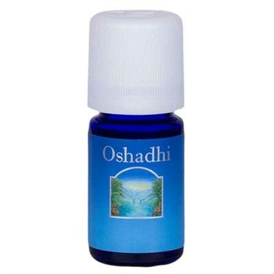 Litsea cubeba May Chang orgânico 5ml Oshadhi R$21