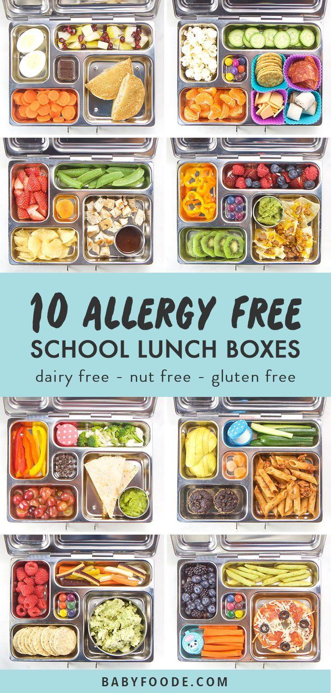Avocado Chicken Salad Recipe Lunch Dairy Free Recipes Food