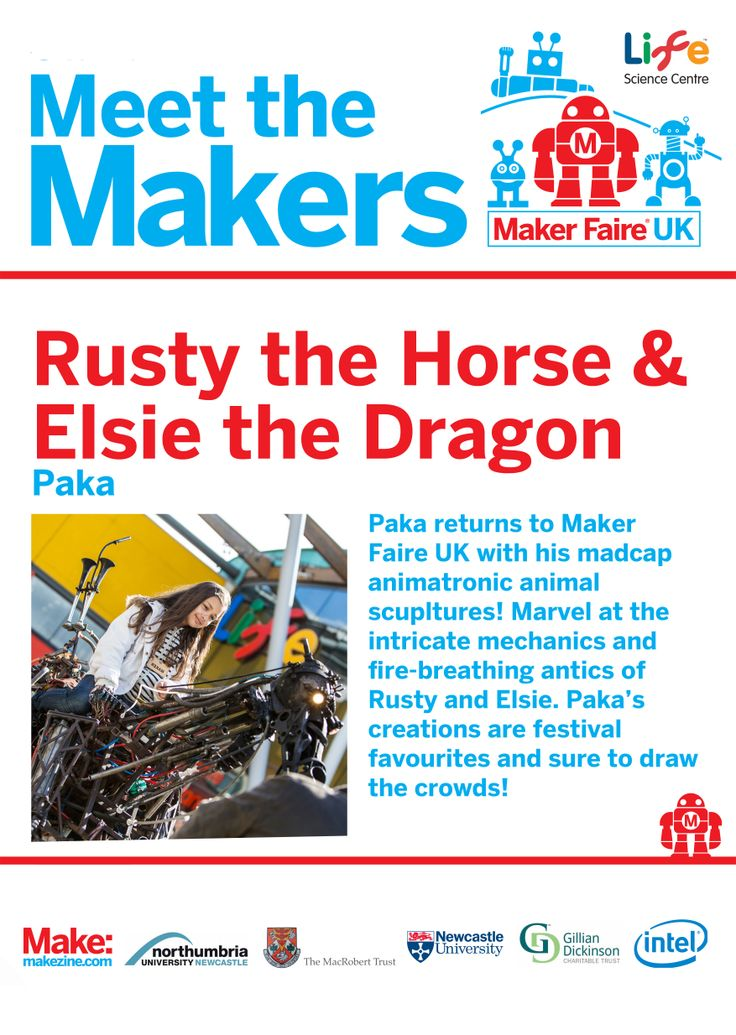 Paka at Maker Faire UK 2014