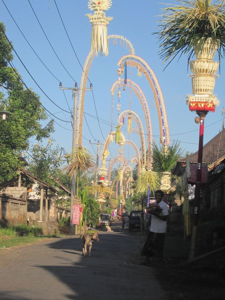 Penjors in our neighborhood. Every Balinese compound must display one for Galungan.