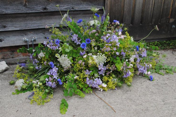 In memory . Wild flowers for top of coffin