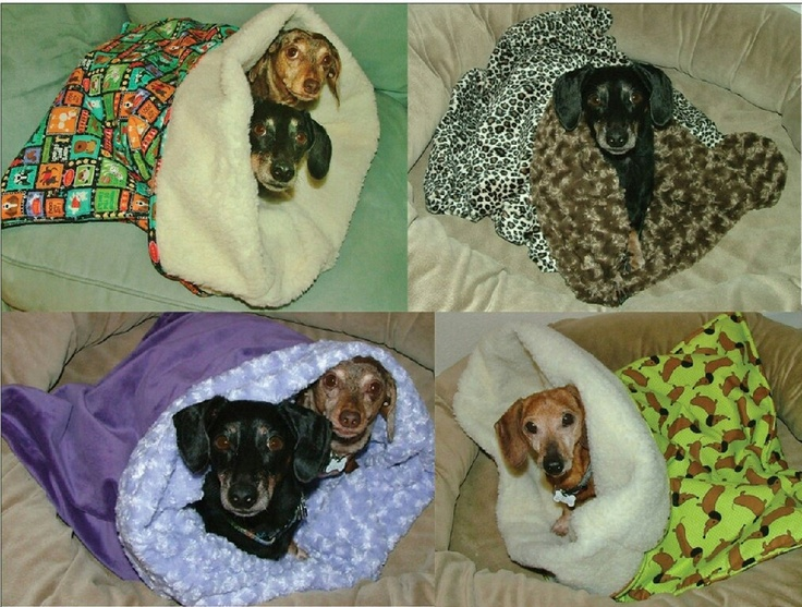 Black Monday Sale Dog Beds